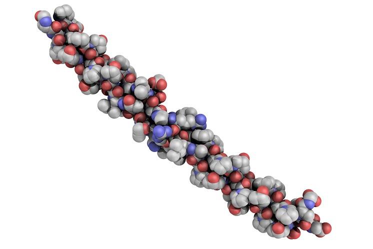 struktura chemiczna białka modelu kolagenu